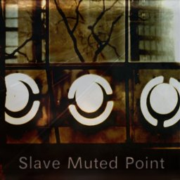 Slave Muted Point cover artwork
